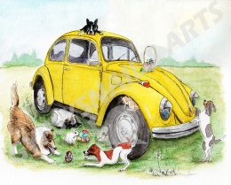 Dogs Adventure with Taxi Bug2bsmlr2